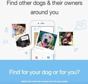 Dog Tinder