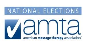 AMTANatl2013Elections-banner