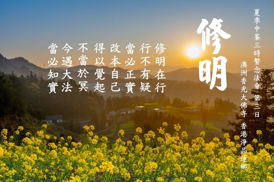 flower-4022238.jpg