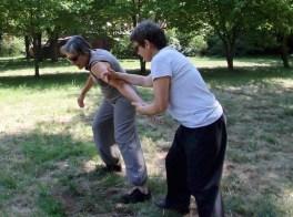 taichi- forme combat2