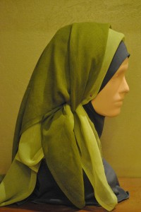 done, picture from the side  Hijab Style: We Cover our Head, not Our Brain Content Meeting May 2013 027