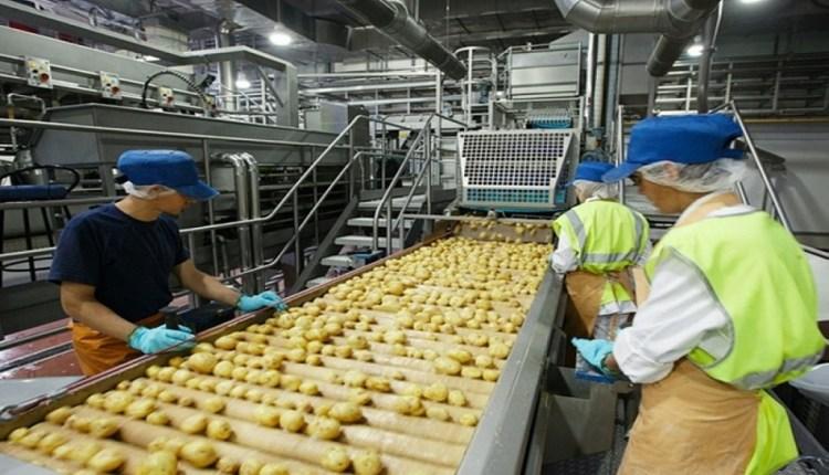 مصنع أغذية