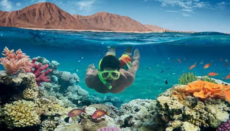 السياحة الشاطئية في مصر