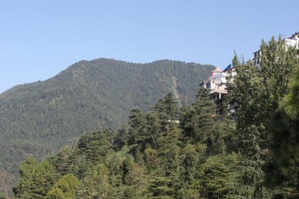 From beside Tsuglagkhang Complex, Gangchen Kyishong