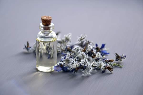 smell-nice-perfume-fashion-floral