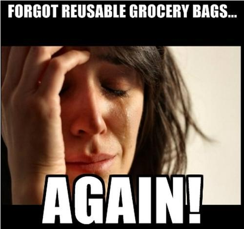 forgot-reusable-grocery-bags-again-meme