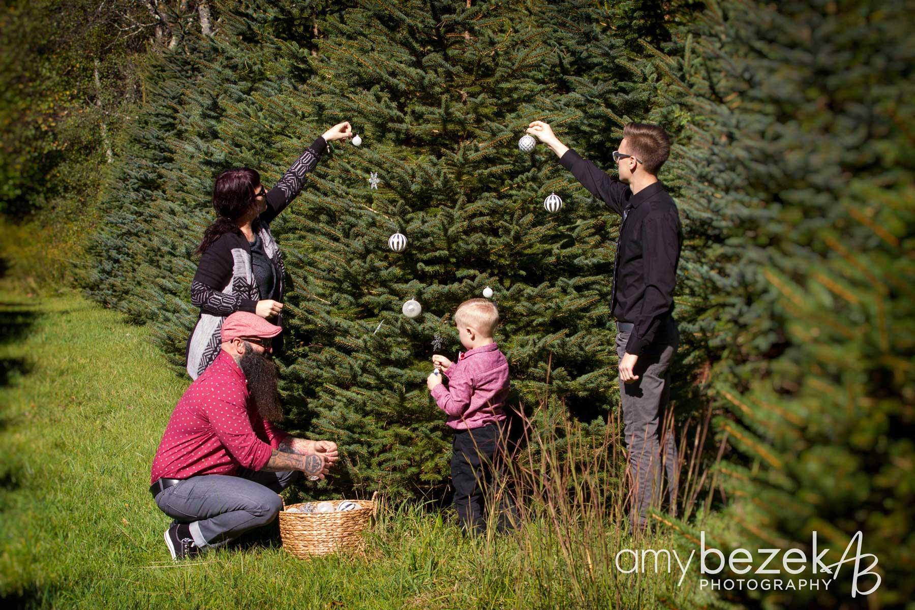 Christmas Tree Farm Photography, Wilkes-Barre, PA