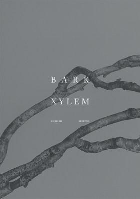 barkxylem-1