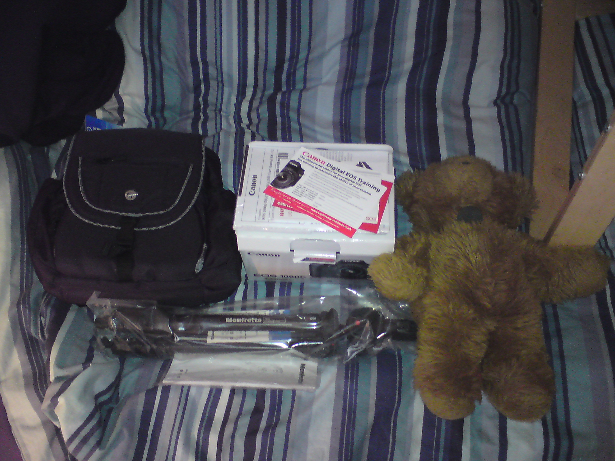 Stanley Bear acts as a size guide for the tripod