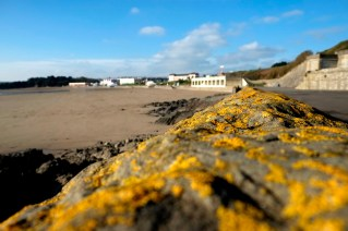 barry-island-winter-amydavies020