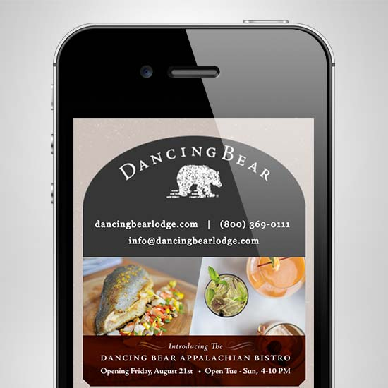 Dancing Bear eNewsletter