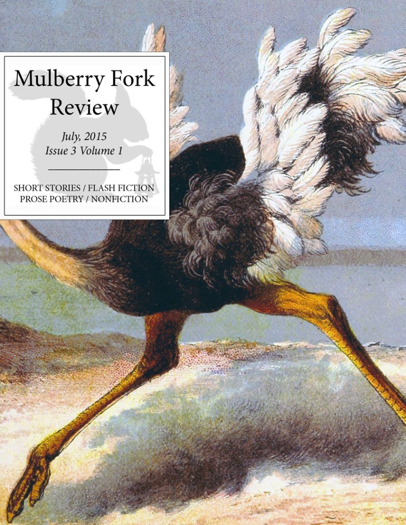 Mulberry Fork Review Issue 3 Volume 1 Cover