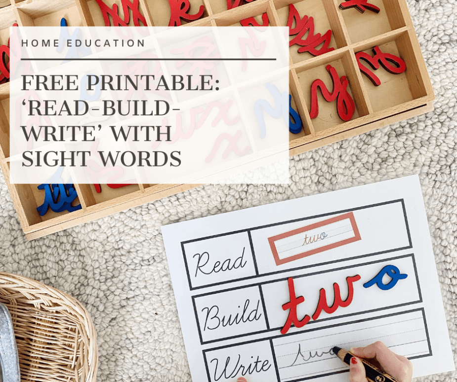 Read - build - write printable activity for phonics from Free and Unfettered