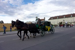 Casual horse-drawn carriage ride in Vienna