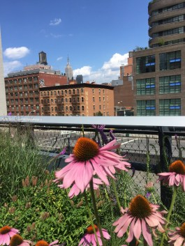 The High Line was a Highlight!