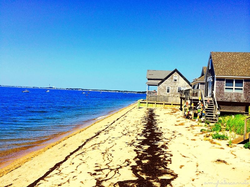 Road Trippin' Thru Provincetown, Massachusetts | My top 5 gratitudes after returning home from a solo 48 State road trip.