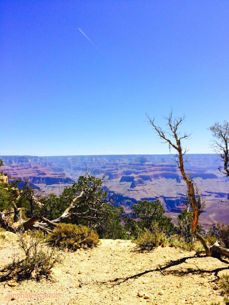 The first stop of my solo 48 state road trip was the Grand Canyon in Arizona. #gorgeous