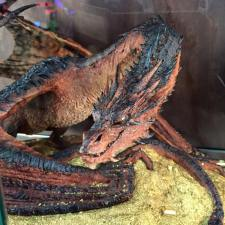 Smaug at the Weta booth