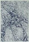 Helicobacter_pylori[1]