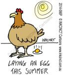 2014-065P--2014-066P--laying-an-egg-this-Summer-ENVIRONMENT-HEATWAVE-HOT-WEATHER-CHICKEN-