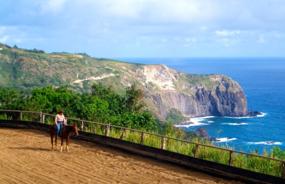 Mendes Ranch_Maui0306B 113
