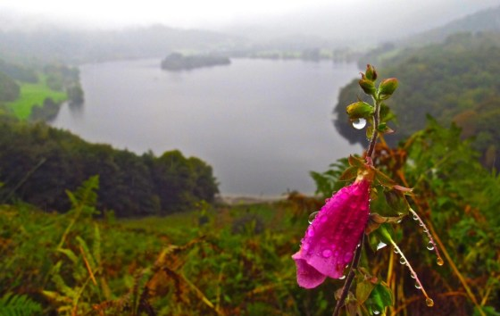 Grasmere viewed from Loughrigg Fell