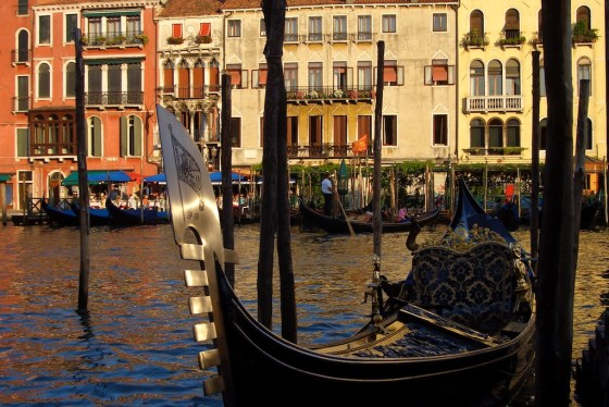 Gondola moored along the Grand Canal of Venice. © Amy Laughinghouse.