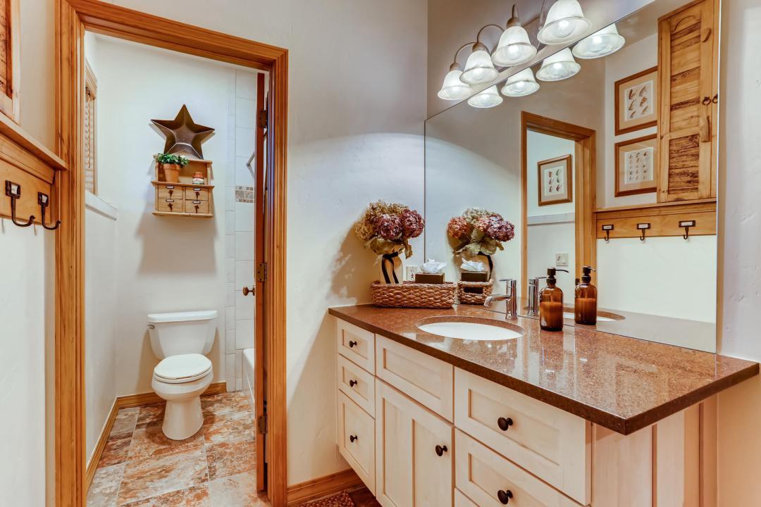 555 Wooden Canoe Dillon CO-Lower Level Bathroom