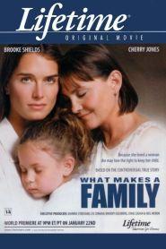 Do que é Feito uma Família