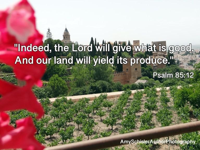 Harvest Psalm 85:12