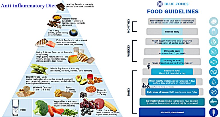 anti-inflammatory and blue zone diets