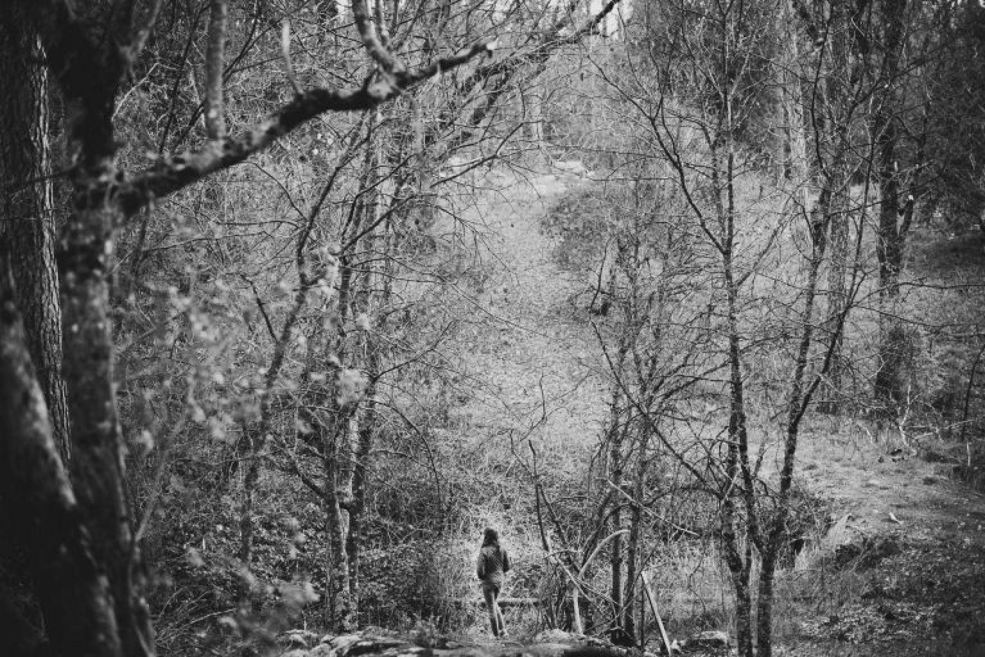 Amy Schuff - Sacramento Photographer