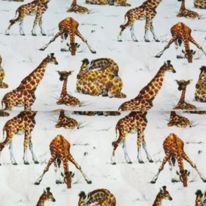 Katoen - Stenzo Giraf