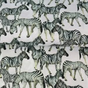 Katoen - Stenzo Zebra