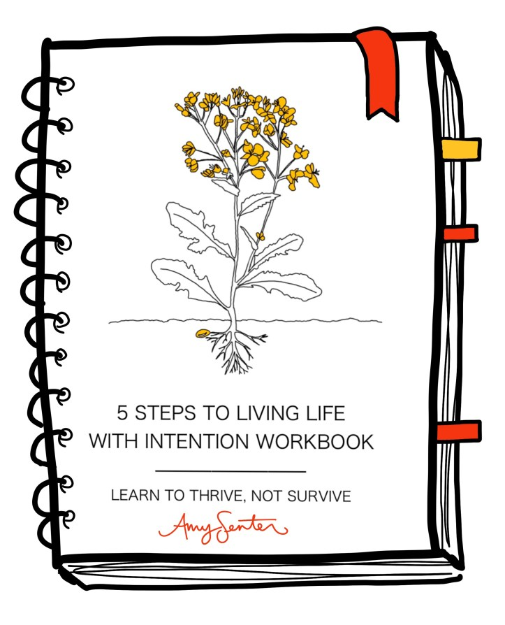 Intentional living workbook