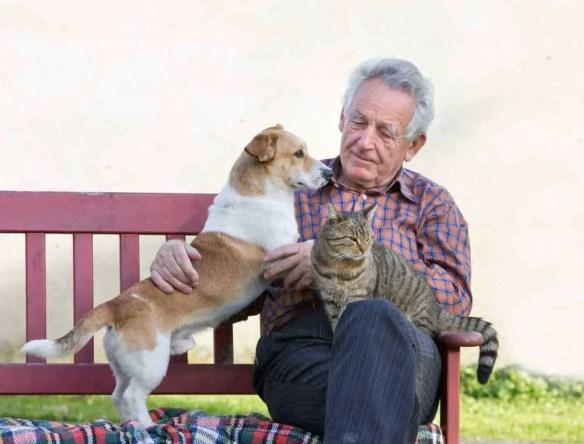 old man old pets