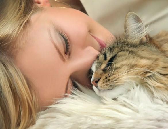 Valentine's Pet Safety