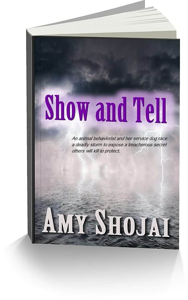 ShowTell-3d-words
