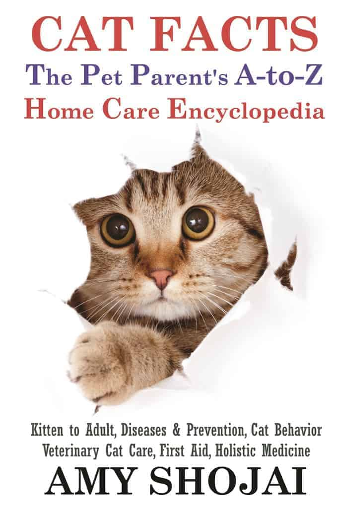 Cat-Facts-Cover-Front copy