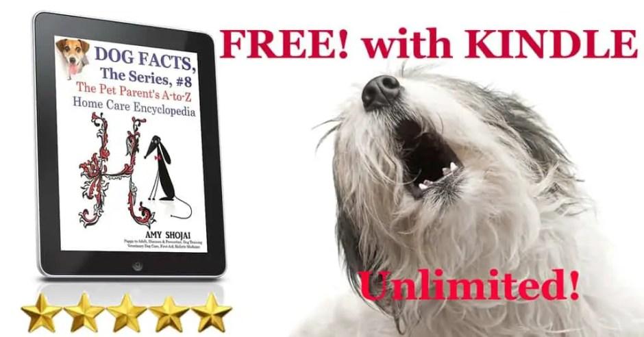 Treating Hemophilia In Dogs