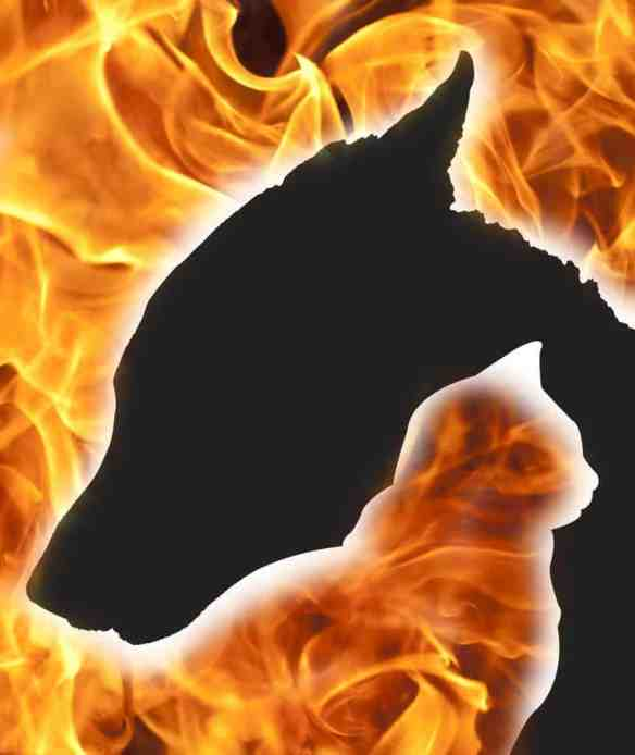 fire smoke inhalation tips