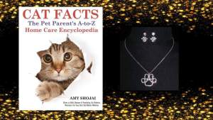 cat facts give away