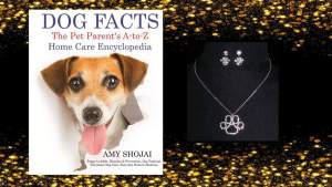 dog facts give away