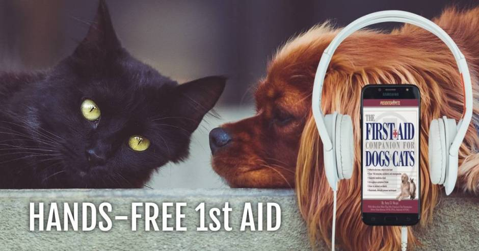 first aid audiobook