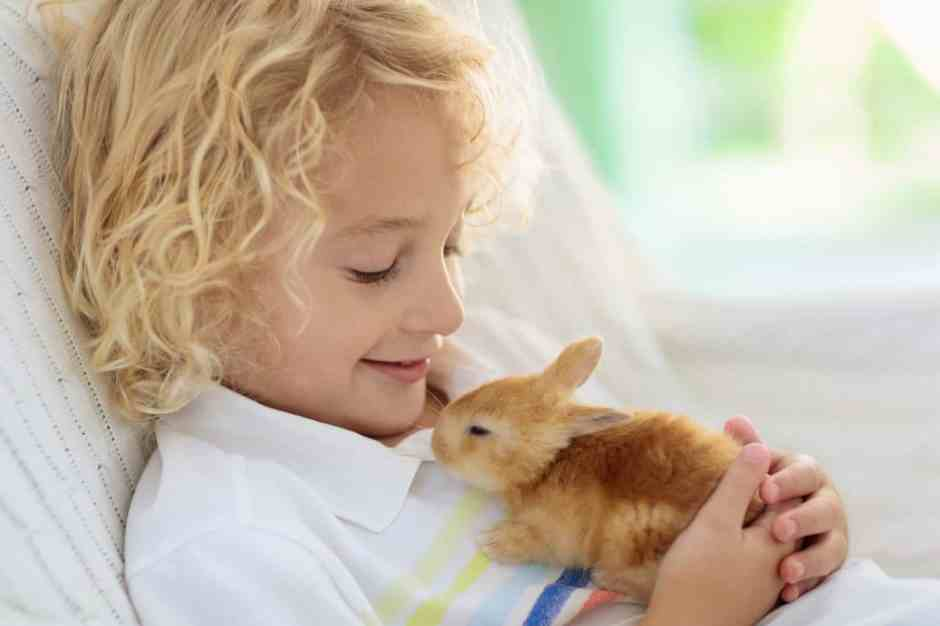 pet easter dangers