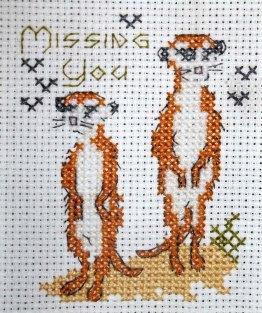Meerkats 'Missing You'