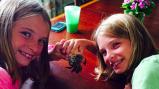 Found treasure: Bob the Hermit Crab