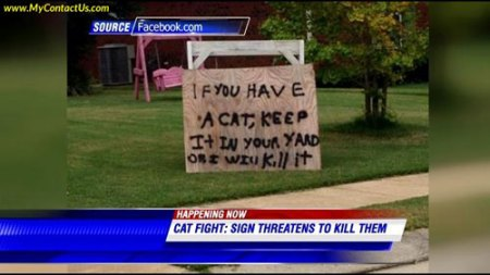 Cat-threat1