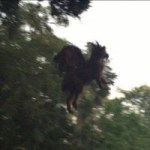 Has The Infamous Jersey Devil Finally Been Captured On Film?