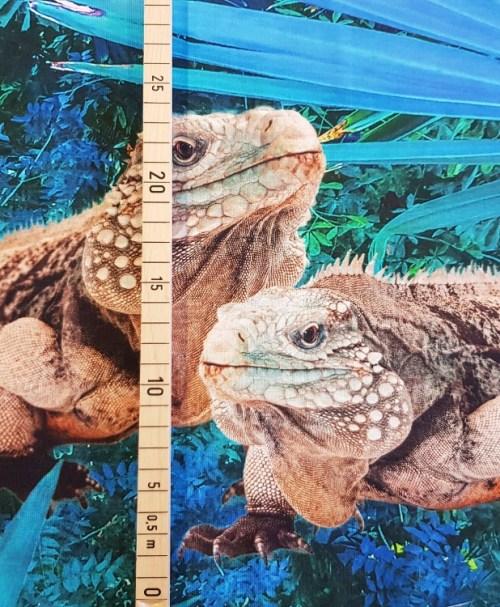 Jersey Rapport Iguana